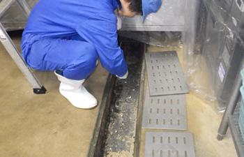 排水管、グレーチング洗浄